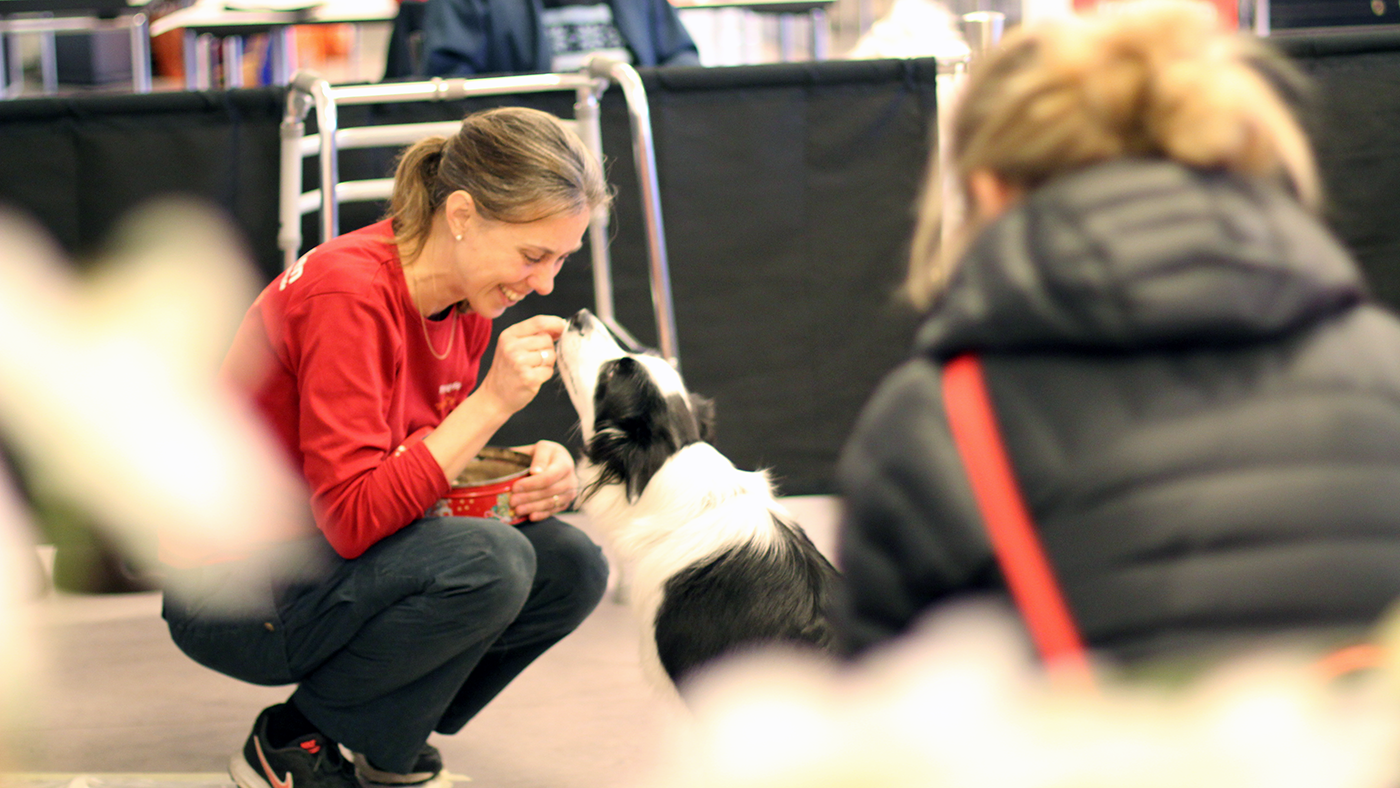 Der er en forhøjet smitterisiko ved at fodre med råt kød. Derfor kan hunde, der fodres med BARF, ikke blive besøgshunde i TrygFonden.