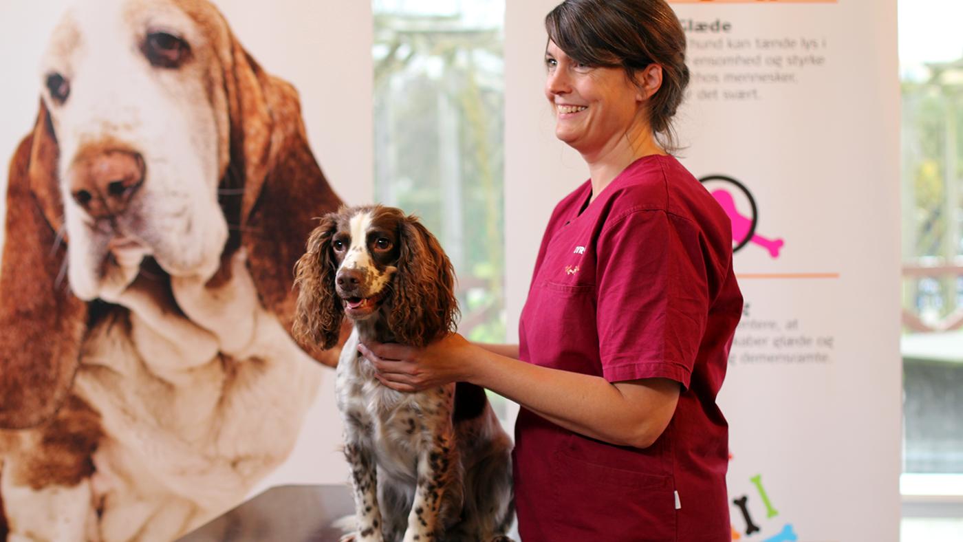 Hør dyrlæge Pia Andersen fortælle, hvad du skal være opmærksom på, inden du tager på besøg med din hund.