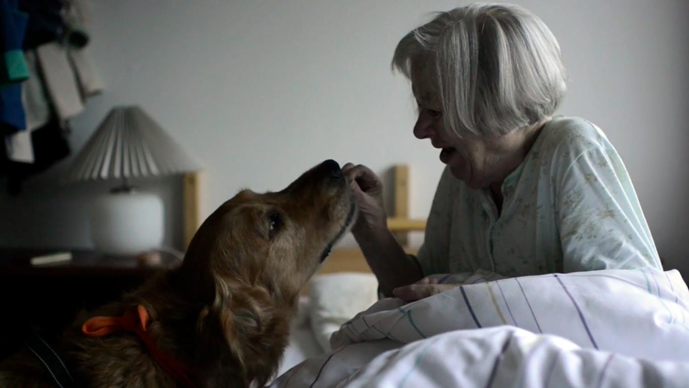 Denne lille film viser en stjernestund for Jutta.
